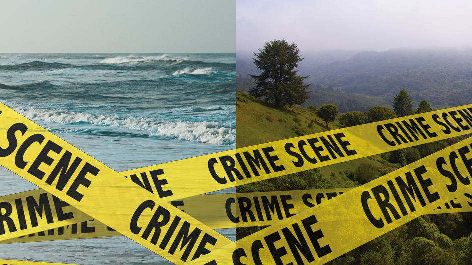 sea scape and tree scape side by side with overlay of criss-crossed crime scene tape