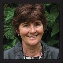 Headshot of Sue Williams